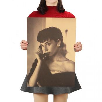 Plakát Audrey Hepburn č.14