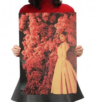 Plakát Audrey Hepburn 51,5x36cm Vintage č.17