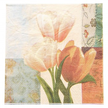 Papírové ubrousky 33*33 cm ( 20 kusů v balení)