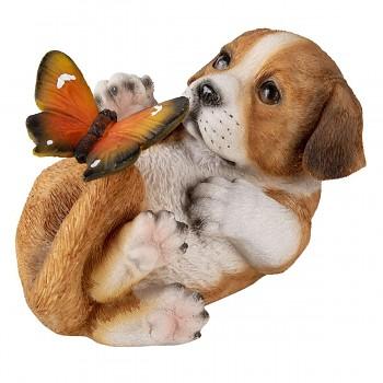 Pejsek s motýlkem