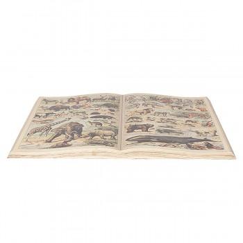 Dekorativní kniha